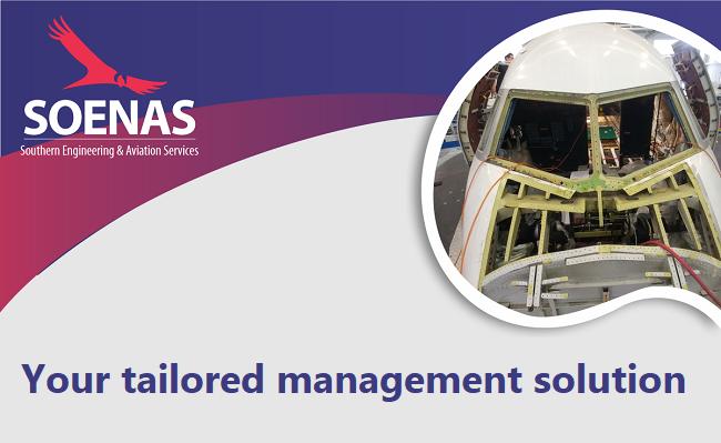 SOENAS Representation and Management Services