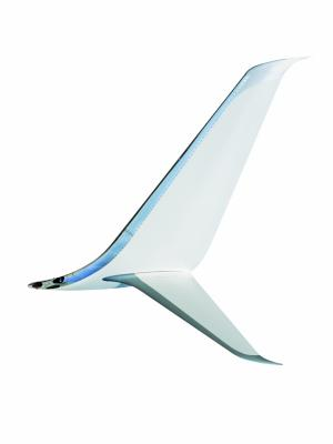 Your Proven Winglet Specialist